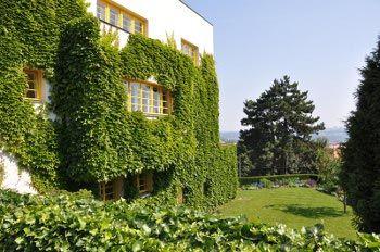 Loos - Villa Müller Prag