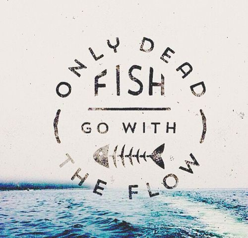 Only dead fish go with the flow inspiration quotes for Only dead fish go with the flow