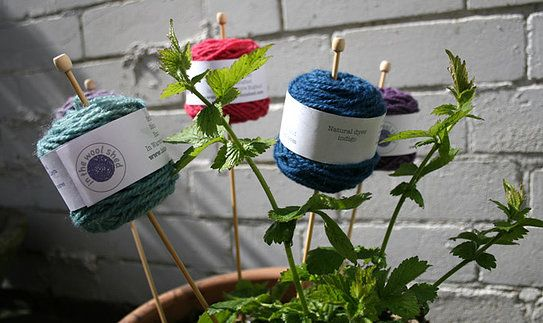 Our delicious new Lleyni Mini Wool Pots