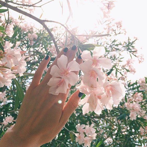 Пусть сердцу вечно снится май.