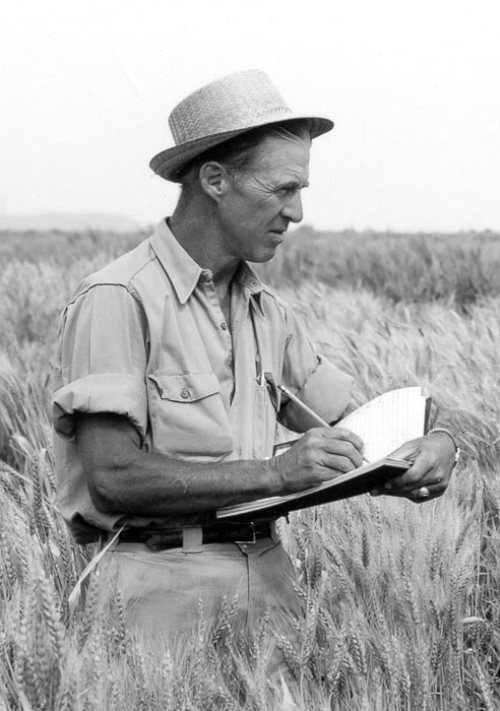 Norman Ernest Borlaug-American biologist, was awarded the Padma Vibhushan, India's second highest civilian honor. Ph.D. in plant pathology and genetics from the University of Minnesota in 1942. He took up an agricultural research position in Mexico, where he developed semi-dwarf, high-yield, disease-resistant wheat varieties. he introduced this product and process to Mexico, Pakistan, and India.