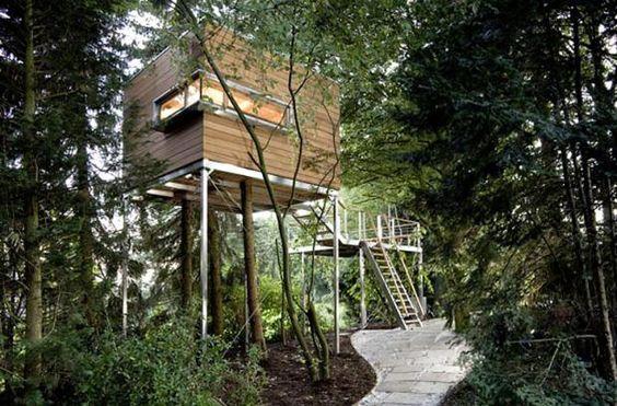 Zwischen den Wipfeln: Baumhaus von Baumraum