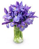 Blue Iris with Oval Vase by @1stinflowers.com #birthday #flowers