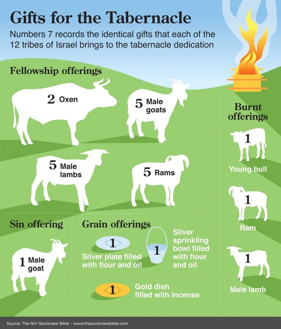 The Quick View Bible » Gifts for the Tabernacle This graphic could be really helpful when teaching children about the Tabernacle. Free lesson at http://missionbibleclass.org/old-testament-stories/old-testament-part-1/exodus-through-12-spies/the-tabernacle/: