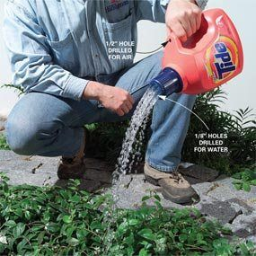 Instead of throwing away empty laundry detergent containers, rinse them out thoroughly and then recycle them for watering plants. Drill 1/8-in. holes in the top of the cap, and a 1/2-in. hole just above the handle to relieve pressure so the water flows freely.  From Suzi Homefaker