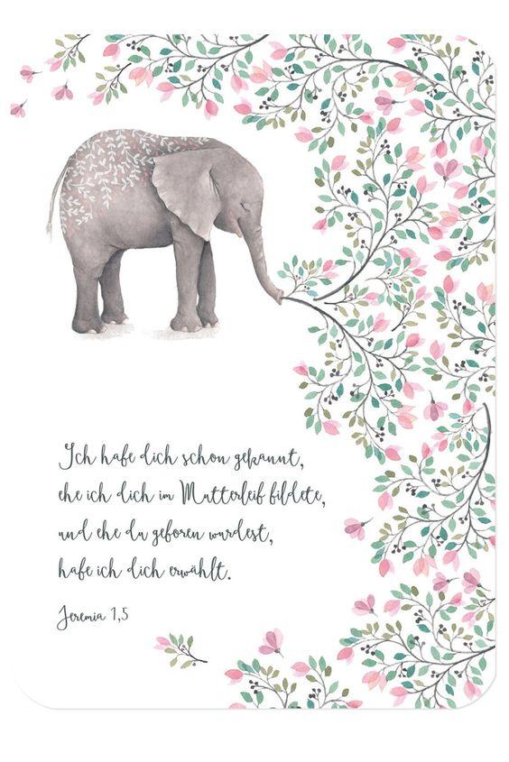 """Bibelvers auf der Postkarte: """"Ich habe dich schon gekannt, ehe ich dich im Mutterleib bildete, und ehe du geboren wurdest, habe ich dich erwählt."""" - Jeremia 1,5"""