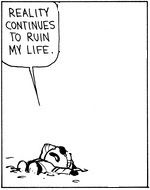 Calvin and Hobbes - reality continues to ruin my life: