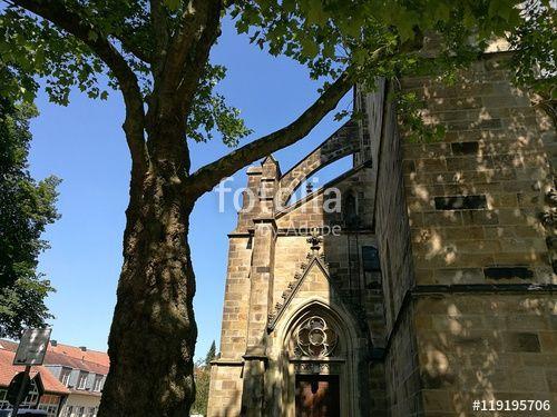 Alte Bäume vor der Fassade der Herz-Jesu Kirche im Bistum Münster in Westfalen im Münsterland