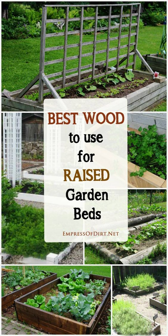 Best Wood to use for Raised Garden Beds Gardens, Stains