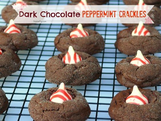 Dark Chocolate Peppermint Crackles | Noble Pig