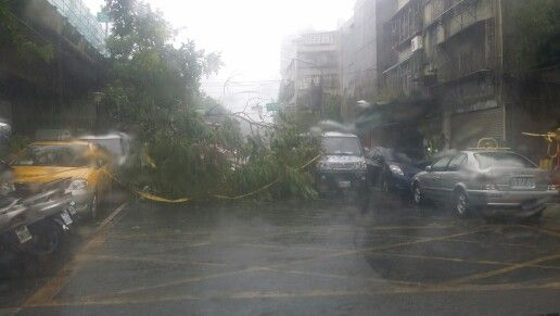 蘇迪勒颱風:提醒各位鄉親長順街60巷10號前路樹到榻無法通行請繞道行駛注意安全