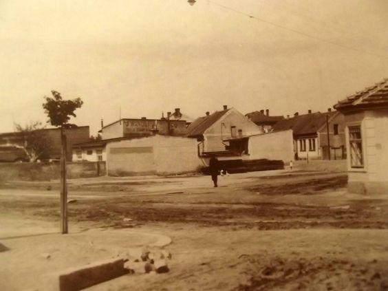 Ulice u Borků r.1920