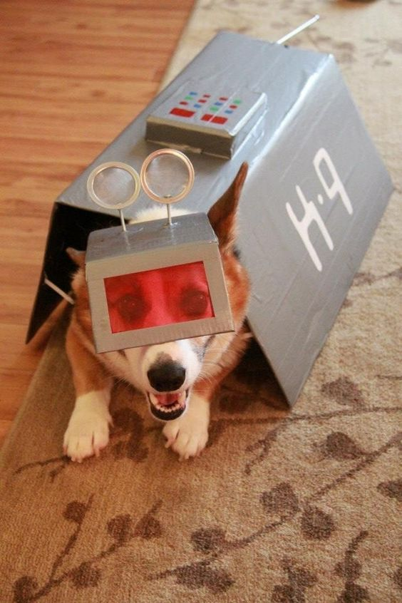 Little Fido can get into the spirit too! | 21 Doctor Who InspiredCrafts - @jaellis486 for Chanel!!!