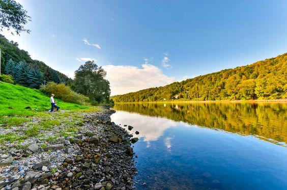 Elbe Park - Elbe Park beauty
