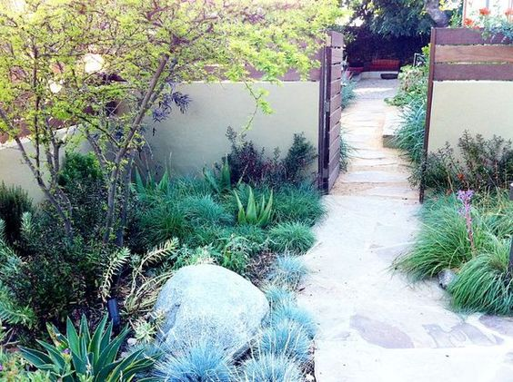 Desert Backyard Makeover : landscape designers sustainable makeover of this backyard garden