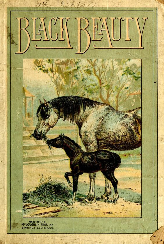Black Stallion Book Cover : Black beauty the autobiography of a horse book covers