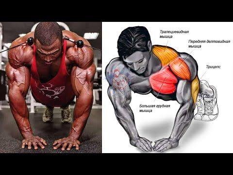 تمارين الضغط 8 انواع بوش اب واستهداف كل تمرين Push Ups Youtube Chest Workout Routine Chest Workouts Bodyweight Workout