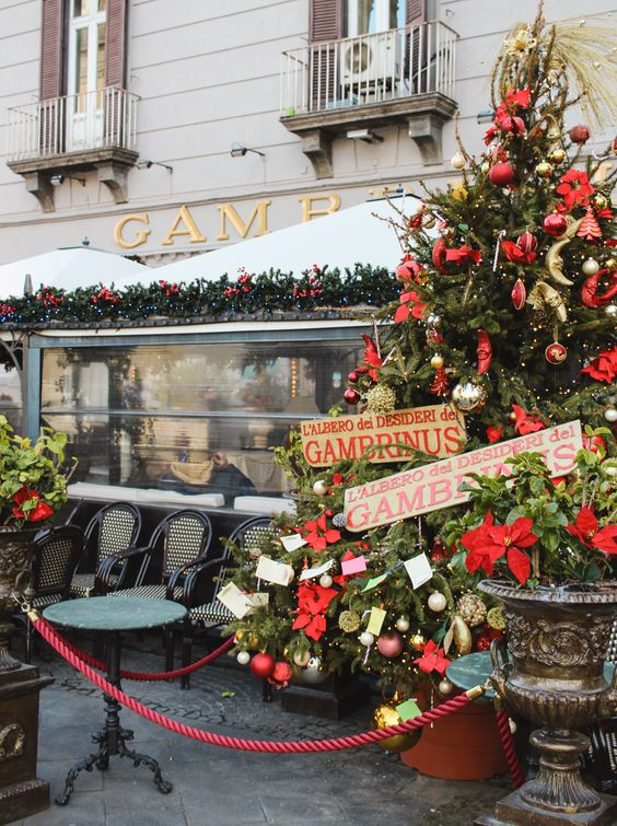 Gambrinus at Christmas | Naples, Italy