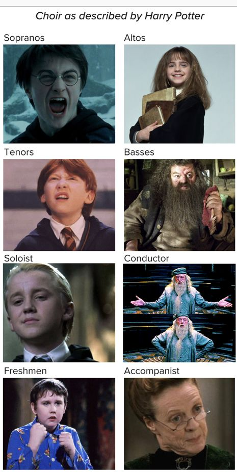 Pin By Classikosmos On Harry Potter Choir Memes Music Memes Funny Music Humor