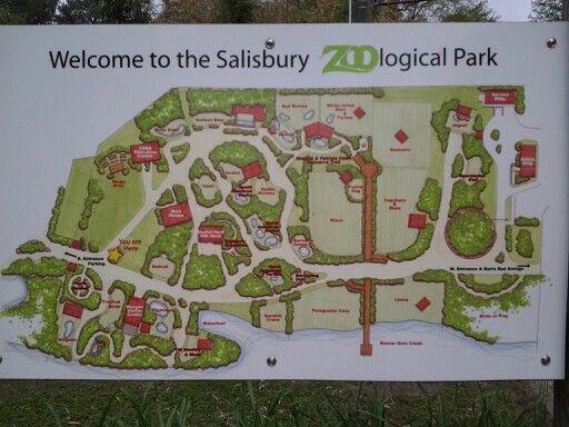 Map of the zoo  Salisbury Zoo  Pinterest  Zoos and Salisbury