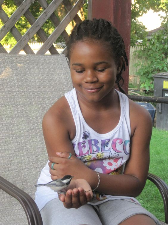 My niece feeding a chickadee by hand