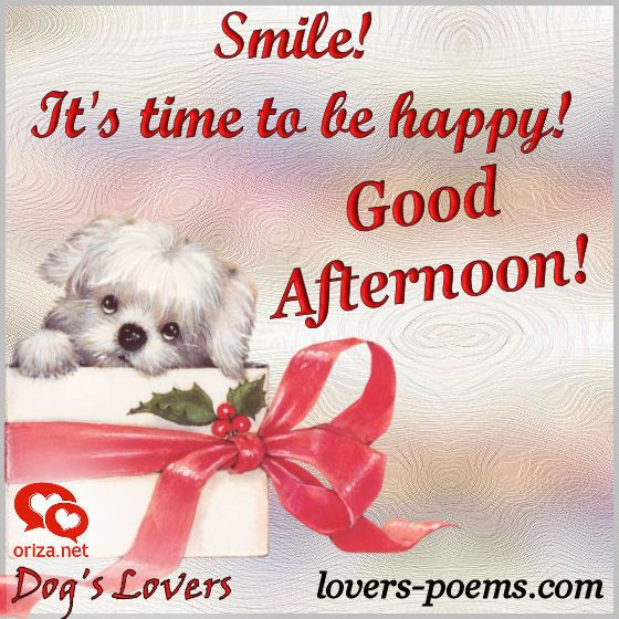 Good Afternoon Smile Good Evening Wishes Afternoon Quotes Good Afternoon