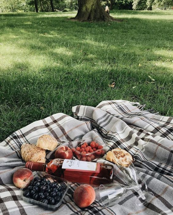 summer picnic, relax, summer get away, staycation, park, fun with food, picnic for two