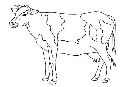 70 Animal Colouring Pages Free Download Print Cow Coloring Pages Animal Coloring Pages Animal Templates