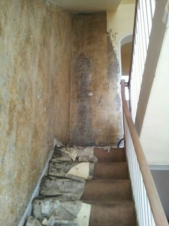Stripping wallpaper off the stairs June 2016