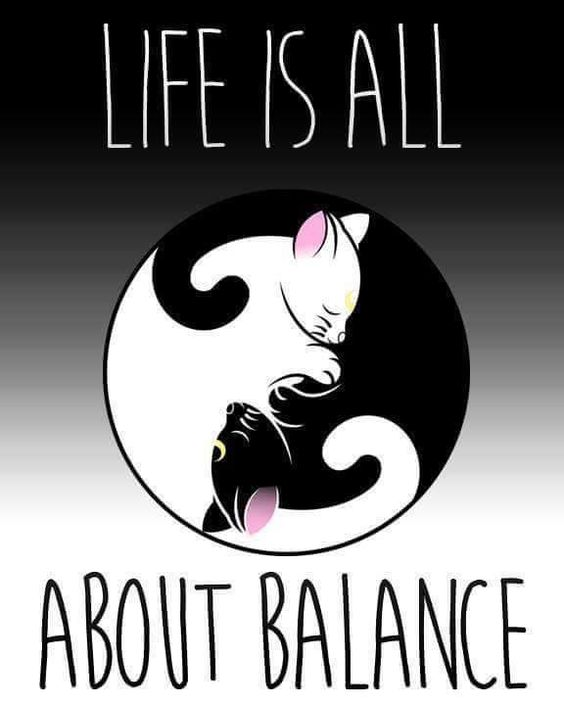 * * Yin & Yang - All about opposites. One could not be without the other. Black & White, Yes & No, Front & Back, Up and Down, Pain and Painless, Sorrow and Joy, and so on.: