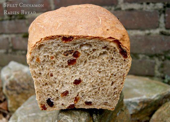 Home Cooking with Sonya: Spelt Cinnamon Raisin Bread