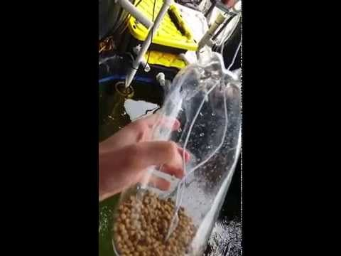 Diy and crafts autos and chang 39 e 3 on pinterest for Diy automatic fish feeder