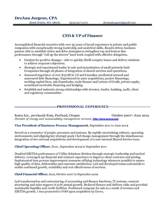 Finance Executive Resume Example Executive Resume Example