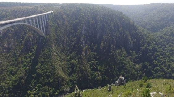 Bloukrans Bridge from across valley