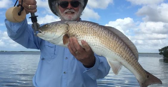 Estero Bay fishing report