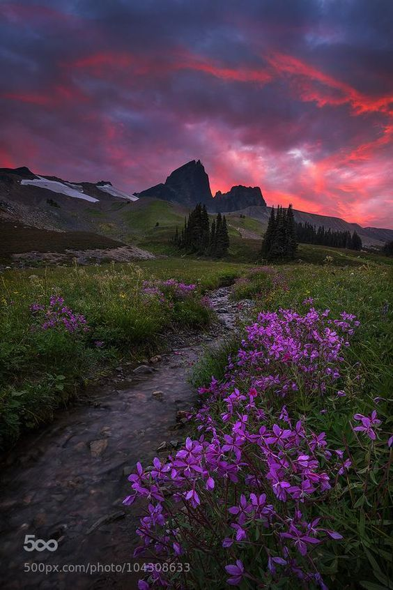 Sky Dance by Artur Stanisz