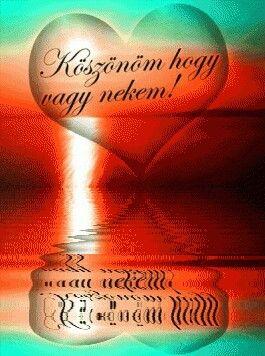 feng shui idézetek Szeretlek image by Mihályné Kőműves in 2020   Születésnapi