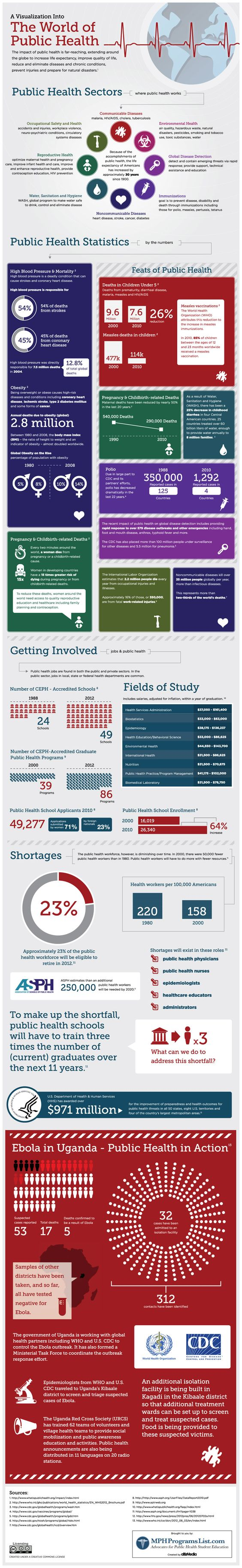 Public Health Infographics Recommended Health Infograpics