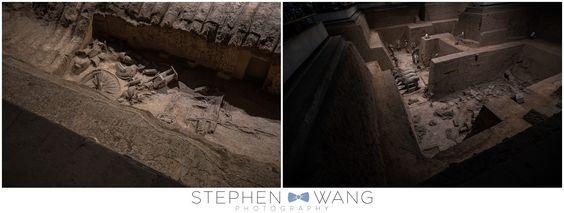 Blog — Stephen Wang Photography