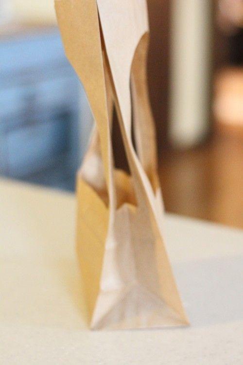 Paper Bag Manger Craft