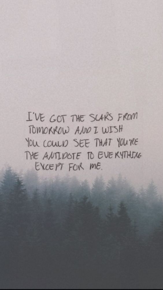 fall out boy, my songs know what you did in the dark