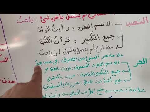 علامات الإعراب الأصلية والفرعية Youtube Arabic Langauge Arabic Language Language