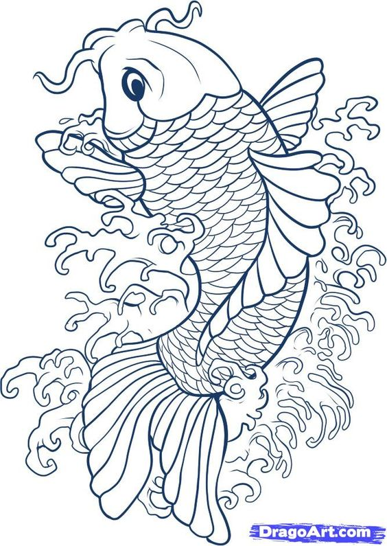 Drawing koi fish connect to study of japan and japanese for Japanese koi fish drawing