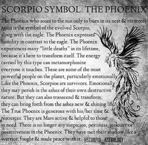 Scorpio symbol: The Phoenix... Quite accurate of life so far. I've been down to rock bottom many times...but never out.