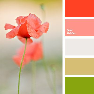 Color Palettes Red Color Palettes And Colors On Pinterest