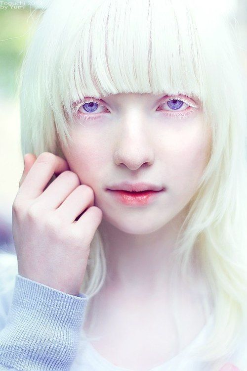 Violet eyes, white skin and hair | Makeup / Lovely Faces ...  Violet eyes, wh...