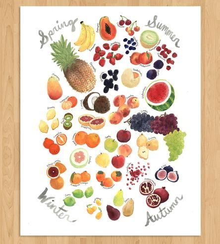 Seasonal Fruit Art Print