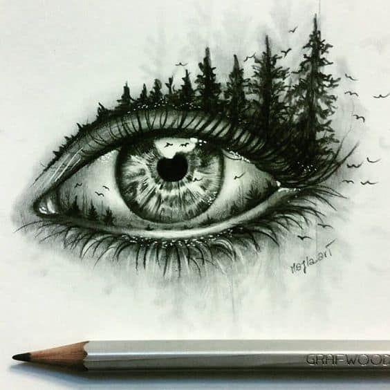 6da28c010b132b51085b7945d928046e » Things To Draw Nature