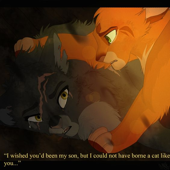 Yellowfang And Fireheart A Cat Like You by Pure...