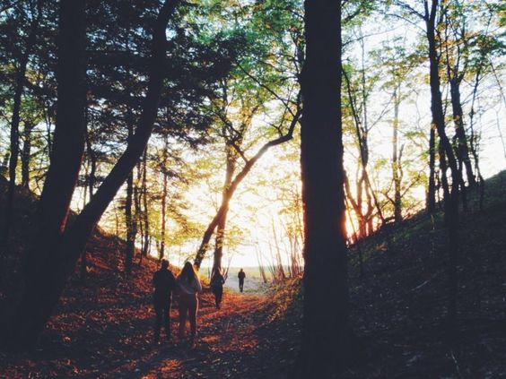 Thought You Didn't Need Fall Hiking Tips? Think Again!
